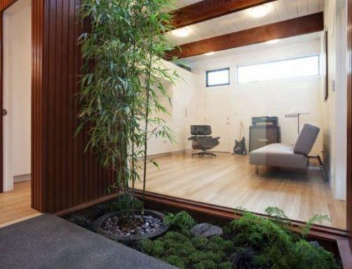 Nuevas tendencias en diseño de jardines de interior
